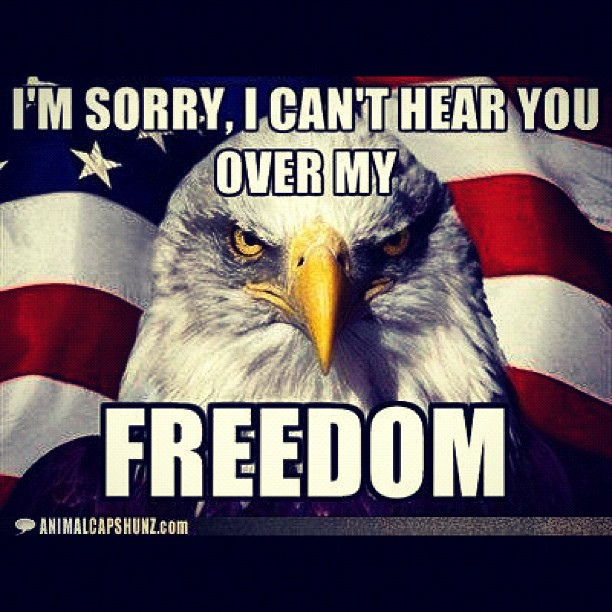 meaning of freedom in america